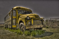 school bus 1955 liberty freedom 1954 depression schoolbus libertarian ci gmc hdr hoodornament tallgrass carpenter 270 bieber mentalillness secondamendment 2ndamendment drb bigvalley usconstitution photomatix lassencounty gadsdenflag garyjohnson gadgetguru darronbirgenheier darronrbirgenheier bipolarphotographer