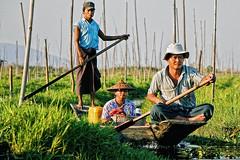 Floating lands #3 (Labjus) Tags: travel family people woman lake man water lago fisherman asia burma floating canoe myanmar inle paddling burmese viaggio canoa pescatore asiatic splashing intha dacqua schizzi birmania labjus
