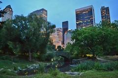 Central Park-The Pond, 08.18.13 (gigi_nyc) Tags: nyc newyorkcity skyscrapers centralpark nycskyline gapstowbridge midtownmanhattan thepond