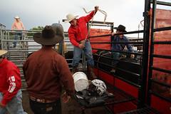 Kalvyn Doan (sportsphoto rob) Tags: toronto ontario canada sports horizontal photo cowboy cattle image picture pic bull photograph rodeo bullriding saddle bullrider saddlebronc skeoch sal24f2z sonya99 strrsh kalvyndoan suttonultimaterodeo