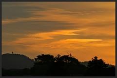 Waiatarua sunset (Zelda Wynn) Tags: trees sunset orange weather clouds bright auckland sunlit waitakereranges waiatarua zeldawynnphotography