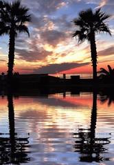 Alghero al tramonto con riflessi.. (antonè) Tags: sardegna sea sun tramonto nuvole mare sardinia cielo sole palme alghero alguer beautifullife antonè rivieradelcorallo angolidisardegna