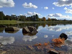 Reflections (tim.perdue) Tags: autumn trees ohio sky lake reflection fall nature water grass clouds landscape rocks arboretum foliage newark dawes