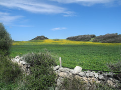 Menorca (geoGraf) Tags: espaa costa coast spain menorca spanien mediterraneansea kste balearen balearicislands mittelmeer parquenatural elmediterrneo lasbaleares