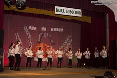21 Noiembrie 2013 » Balul Bobocilor Colegiul Tehnic Petru Mușat Suceava