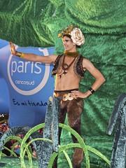 Paris Parade 2013 - Santiago de Chile (alobos Life) Tags: chile santiago paris de navidad december sony parade crema compaia marcha espectacle 2013 nex5r