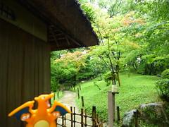 Charizard in Hiroshima, Hiroshima 24 (Shukkei-en Garden) (Kasadera) Tags: toys hiroshima figure pokemon pokmon  charizard   glurak  shukkeiengarden pokemonkids   dracaufeu