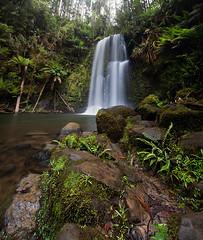 Beauchamp Falls (alexwise) Tags: photography waterfall falls greatoceanroad beauchamp