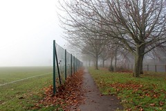 A Foggy Day (Rosie Knightley Photography) Tags: trees nature beautiful beauty weather landscape cloudy surrealism wildlife foggy surreal eerie wierd greenery treescape beautifulnature landscapephotography uploaded:by=flickrmobile flickriosapp:filter=nofilter