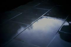 footpath (smellslikeupdog) Tags: colour film dark pentax k1000 kodak slide sidewalk footpath