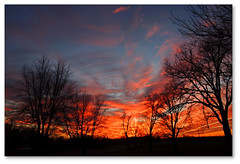 Fire (bogray) Tags: trees winter sunset sky silhouette clouds lexington ky