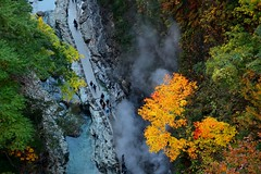 楓煙谷徑  Valley Trail ~秋田,小安峽 Oyasu-kyo Ravine ~