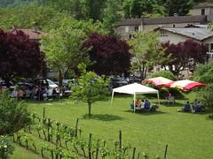 Pique-Nique au Chteau Eugnie (chateaueugenie46) Tags: famille de wine lot nique chateau vignoble chteau couture eugenie cahors pique vins wines albas quercy piquenique midipyrenees