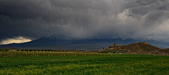 Monasteri_Armeni_0325 (fil_de_fer) Tags: armenia khorvirap
