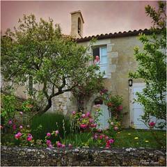 La Dive - Vendée - Juin 2014 (Philippe Hernot) Tags: ladive vendée 85 france philippehernot kodachrome chapelle chapel nikond700 nikon posttraitement