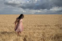 ¿Donde está el verano?? (Nuria Domínguez) Tags: sky woman cloud girl field barley mujer solitude chica dress cloudy cereal cielo campo nublado soledad nube vestido lamancha cebada
