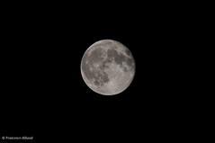 Moon (sgarzulino) Tags: moon bw 500mm sigma nikon telephoto zoom satellite space d5000