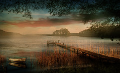 Autumnal (augustynbatko) Tags: autumnal lake water trees view nature landscape mist fog autumn