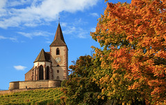 Golden autumn... (Alex Switzerland) Tags: church hunawihr france colors autumn automne landscape kirche herbst canon eos 6d autunno