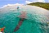 GOPR1217 (philtouristattractions) Tags: butanding whale shark whaleshark oslob cebu