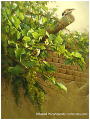 Sparrows on grapevine (saeedpanahzadeh) Tags: original painting pastel oil middleeastern middle eastern sparrow green grapevine wall