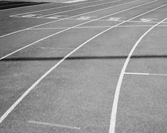 Running track black and white (danielfoster437) Tags: competition emptyrunningtrack kodakportra mamiya7 mediumformat meinfilmlab portra160 race runningtrack runningtracksurface track trackandfield tracksurface wwwmeinfilmlabde