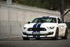 Shelby GT350. (David Clemente Photography) Tags: shelby shelbymustang shelbygt500 shelbygt350 gt350 gt350r fordmustang tgcup autodromomonza supercars cars americancars americanmusclecars