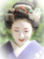 Maiko20161016_11_06 (kyoto flower) Tags: eiunin temple toshimomo kyoto maiko 20161016     yoshiyukikomori