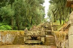 Stairway to heaven (Pedro Nuno Caetano) Tags: portugal braga mosteirodesmartinhodetibes monastery