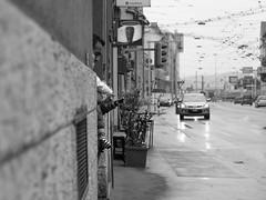 Avid Learner (pxlline) Tags: baby zrich streetphotography candid dasischzri switzerland dasischzri zrich ch