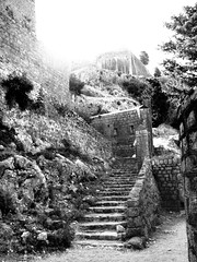 IMG_5394 (maru.hvozdecka) Tags: guca trumpet festival balkan music serbia montenegro krka dubrovnik kotor oldtown unesco gipsy tara bridge fortress church summer waterfalls