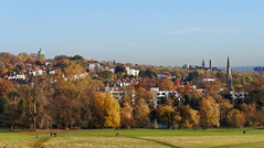 Hampstead Heath in autumn (Dun.can) Tags: hampsteadheath london nw3 hampstead autumn trees parliamenthill pond stanneshighgate stjoseph whittingtonhospital archway archwaycampus