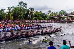 Race is ON |  Payipad boat race 2016,Alappuzha,Kerala. (vjisin) Tags: kerala alappuzha payipad india asia photostory nikon nikond3200 tradition seashore nikonofficial documentary composition streetphotography street ngc outdoor people indianheritage backwaters indianculture