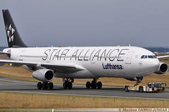 """D-AIGY Airbus A340 Lufthansa """"Star Alliance Livery"""" (Maxime Spotting Aviation) Tags: daigy airbus a340 a340300 lufthansa star alliance livery runway aircraft avion air airlines airways francfort frankfurt airport fra eddf maxime camoujuncas nikon d90"""