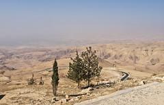 Das Gelobte Land / The Promised Land (schreibtnix) Tags: reisen travelling jordanien jordan landschaft landscape wste desert bergnebo mountnebo bume trees himmel sky olympuse5 schreibtnix