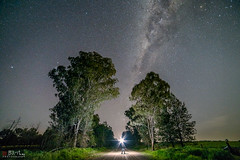 The Dark Road. (Bill Thoo) Tags: thedarkroad parkes nsw australia sony a7rii samyang 14mm ngc milkyway sky night stars landscape road travel rural country bush mystery fantasy magical trees