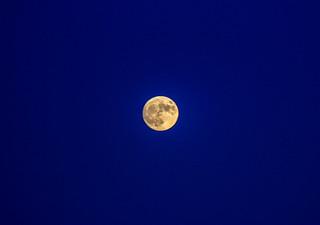 Super Moon Up Close