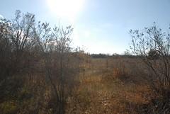 DSG_7392 Panorama 5 of 6 at Photo Post #2 (Greying_Geezer) Tags: 2016 hazelbird ncc natureconservancyofcanada hamiltontownship ort hiking naturereserves hazelbirdnr2