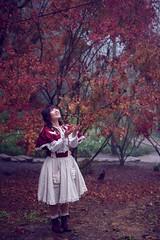 SDF_5766 (SendoFu) Tags: bonnet ボンネット エプロン風スカート blouse bl ブラウス headbow kc カチューシャ bnt 蕾絲 維多利亞 jsk op onepiecedress ワンピース jumperskirt ジャンパースカート nop lolita lolitafashion 蘿莉塔 蘿莉塔時裝 ロリータ・ファッション sweetlolita classicallolita