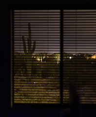 Desert Through the Window at Night (todd*) Tags: backpatio house sunset desert window blinds night
