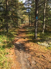 Christine Hare (North Country Trail) Tags: hike100nct exploremore getoutside findyourpark nps100 northcountrytrail encourage encouragement hiking nct northwoods
