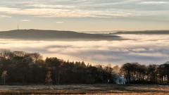 NB-16.jpg (neil.bulman) Tags: countryside longshawestate peakdistrict nature nationalpark derbyshire longshaw fog cloudinversion inversion cloud nationaltrust sheffield england unitedkingdom gb