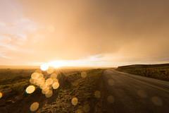 ([ raymond ]) Tags: americansouthwest desert newmexico rain raining southwest sun img5674 landscape summer road