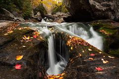 Side Pocket (Josh Stamm) Tags: northcarolinamountains northcarolina waterfalls water white fallcolors fall leaves rock rapids river joshstamm mountains