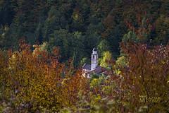 oltrepo23835 (Foto Massimo Lazzari) Tags: collina chiesetta campanile church oltrepopavese vallestaffora