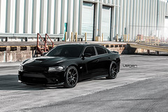 Dodge Charger R/T Scat Pack on Velgen Wheels VMB9 Satin Black 22x9 & 22x10.5 (VelgenWheels) Tags: srt8 america americanmuscle usdm usa us wheels wheel whips dopewhips dopewhip whip exhaust rim rims tyres tyre tires tire yahoo youtube oem products photos photo pictures picture pics pic automobile automobiles auto autos alloy alloywheels sport deep deepconcave daily driven dual dualconcave fitment wheelfitment wheelporn google germany france florida japan uk australia lowered low lowering rez res cars car custom customcars velgen velgenwheels velgensociety vmb5 bing ask askcom new mods dodge rt scatpack mopar moparnocar