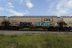 Esay • Beast (Revise_D) Tags: railroad train bench graffiti tags revise beast tagging freight boxcars revised mul trainart fr8 esay benched benching fr8heaven revisedesigns revisedesign