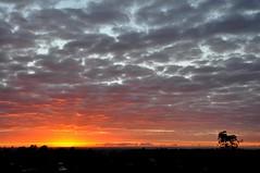 Cloudy Sunrise (Explore) (missgeok)