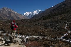 Nepal Himalaya | The Road Goes On | Langtang Valley (wazari) Tags: wazari wazariwazir malaysianphotographer malaysianphotojournalist malaysiaphotographer photojournalist nepal himalaya langtang langtangnationalpark syabrubesi syabrubensi trekking trekkers mountain adventure traveler roadlesstraveled kyanjingompa adventurephotography kathmandu adventurer intothewild wilderness trek himalayan greathimalayantrail photography photographer nepali people landscape tibet tibetan journey destination place tourism adventuretourism backpacking backpackers outdoors outdoor naturallight naturallightphotography nature malaysia