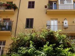 Principe Amedeo 149 (Via) 07 (Fontaines de Rome) Tags: rome roma fountain brunnen fuente via font fountains fontana fontaine rom fuentes bron amedeo 149 principe fontane fontaines viaprincipeamedeo viaprincipeamedeo149